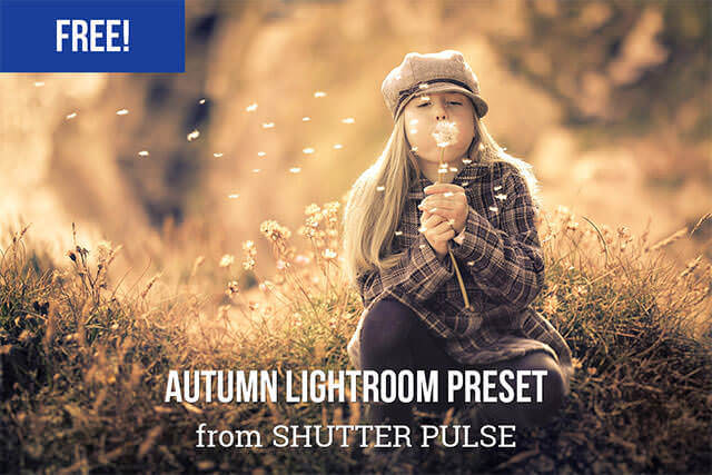 Free Autumn Lightroom Preset
