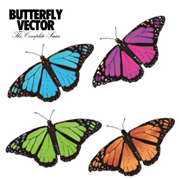 butterflyvector