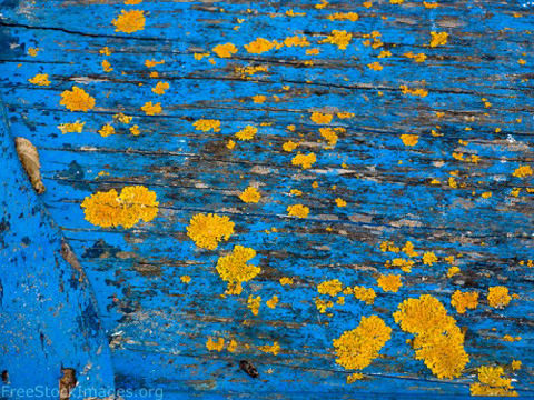 free-stock-images-old-blue-paint-textures-01-500x375