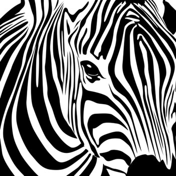 zebravector