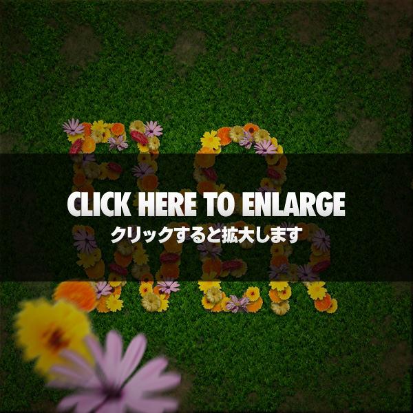 flowertextpreview