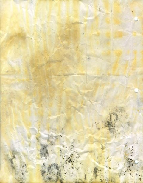 moldy-notebook-paper-018
