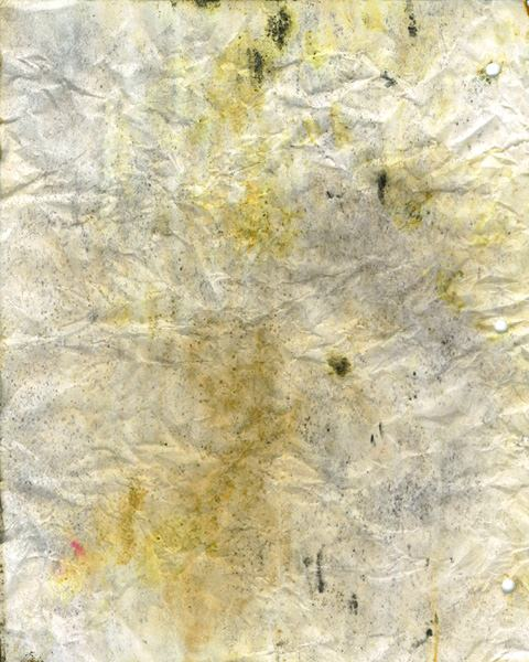 moldy-notebook-paper-023