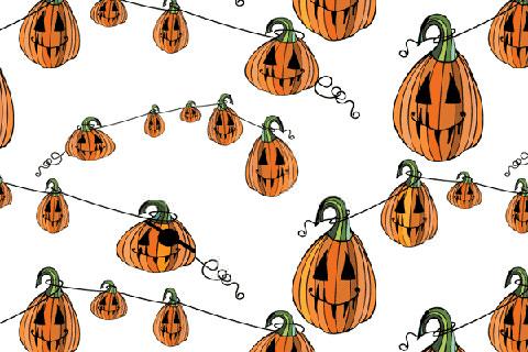 pumpkins2_wh2
