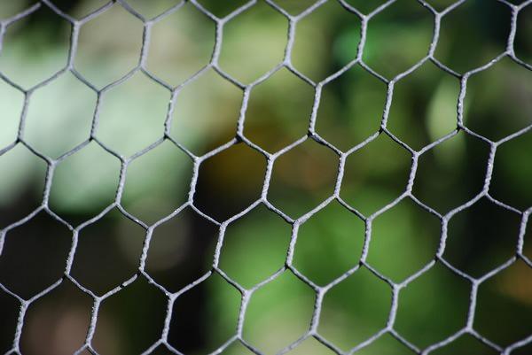 caged-bokeh