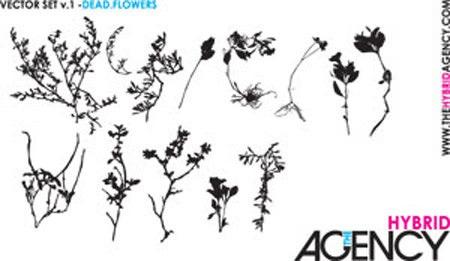 foliage_vectors_04