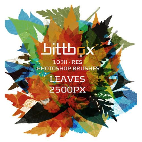 leaf-photoshop-brushes-1