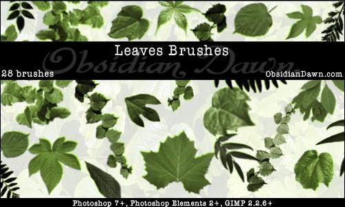 leaf-photoshop-brushes-2