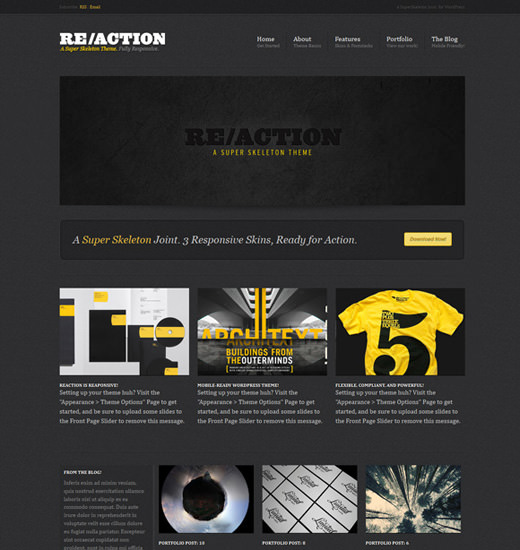 reaction-wp-theme