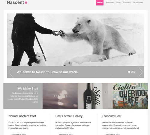 25-nascent-agency-wordpress-theme