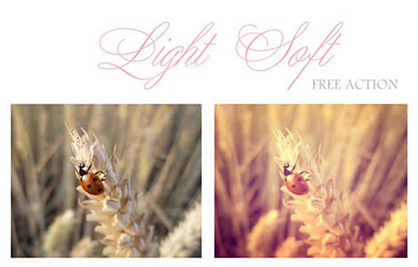 Free_PurBlancas_Action_Soft_Light_by_purblanca90