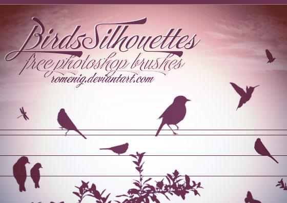 birds+brushes