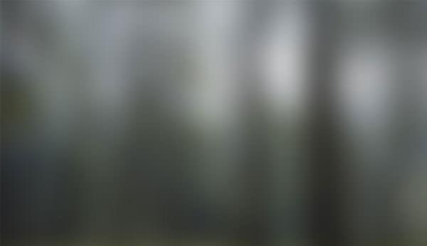 954x550xBlurred-Background_21.jpg.pagespeed.ic.9m36xR8P-Q