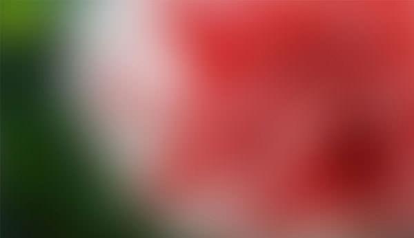 954x550xBlurred-Background_27.jpg.pagespeed.ic.L4WZ8CXtO7