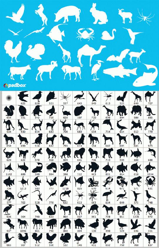 animal-brushes-psdbox-610x948