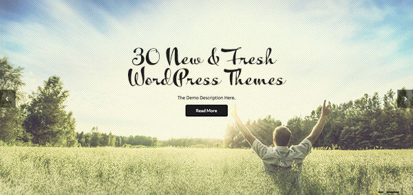 latestwptheme2013sep_top