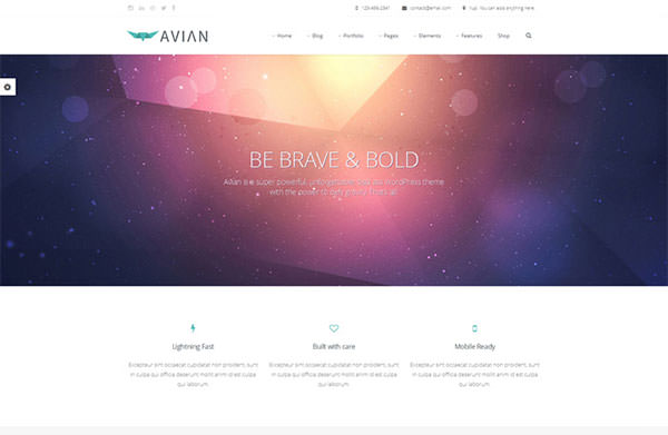 wordpress-themes-jan6