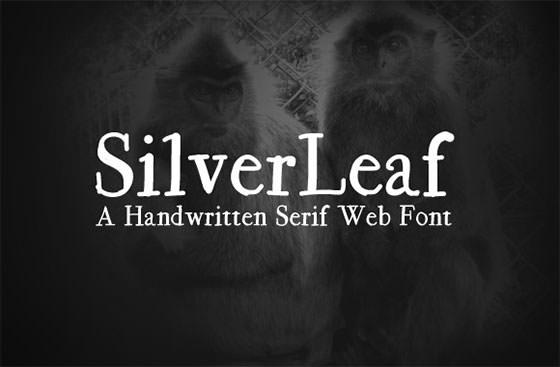 silverleaf-slide1