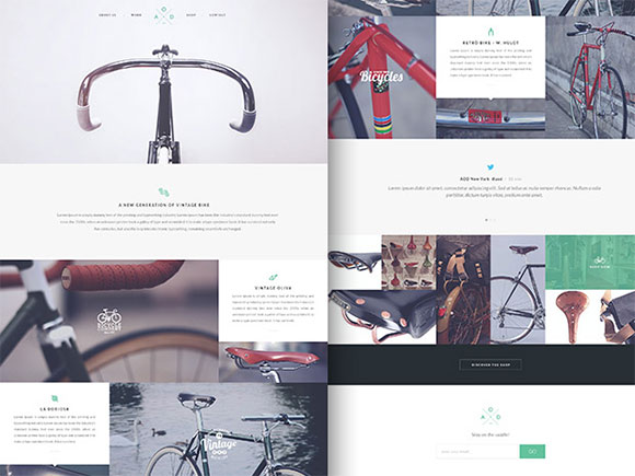 Bicycle Flat Layout PSD