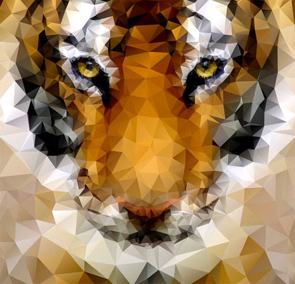 tiger-poly