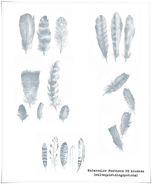 feathers-ps-brushes