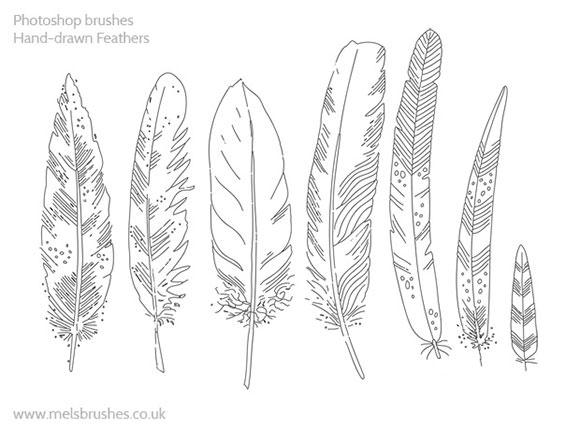handdrawn-feather