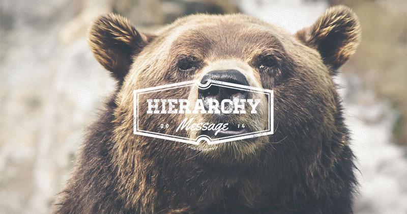 hierarchy2014-top