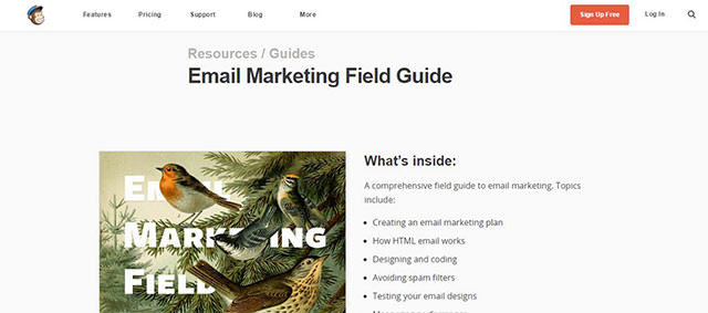 Email-Marketing-Field-Guide