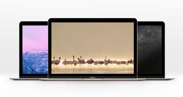 mac-book-new-space-gray-gold-silver-mockup-psd