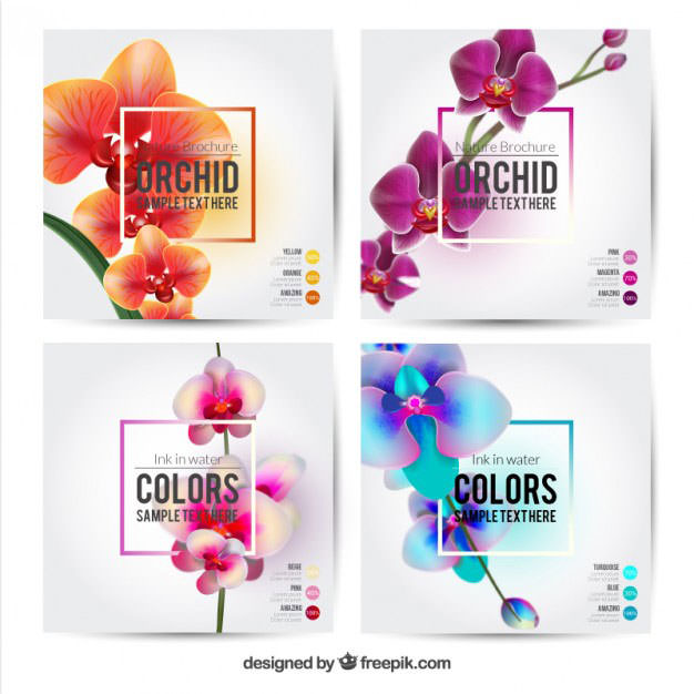flower-brochures-template
