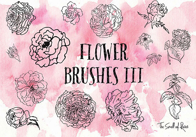 flower-brushes3