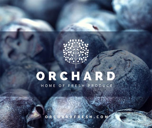 1-Orchard-Social-Media