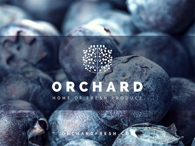 2-Orchard-Presentation