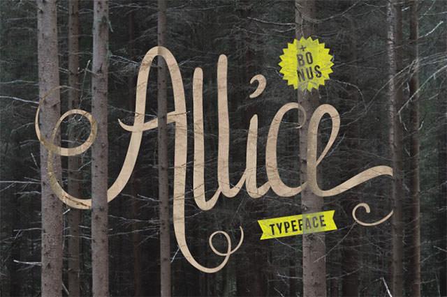 allice-cover-01-o-800x532
