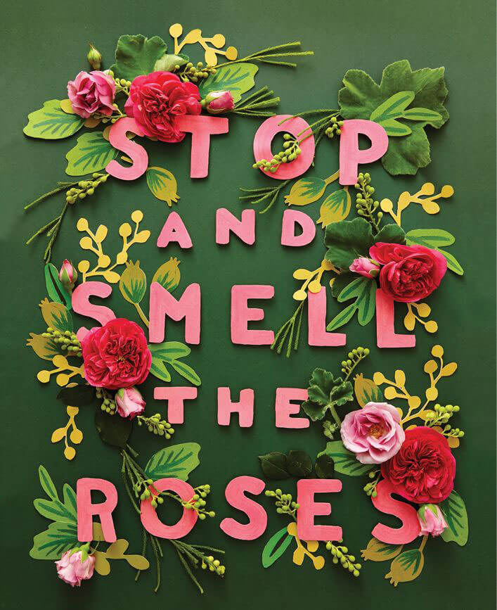 Stop_And_Smell_The_Roses