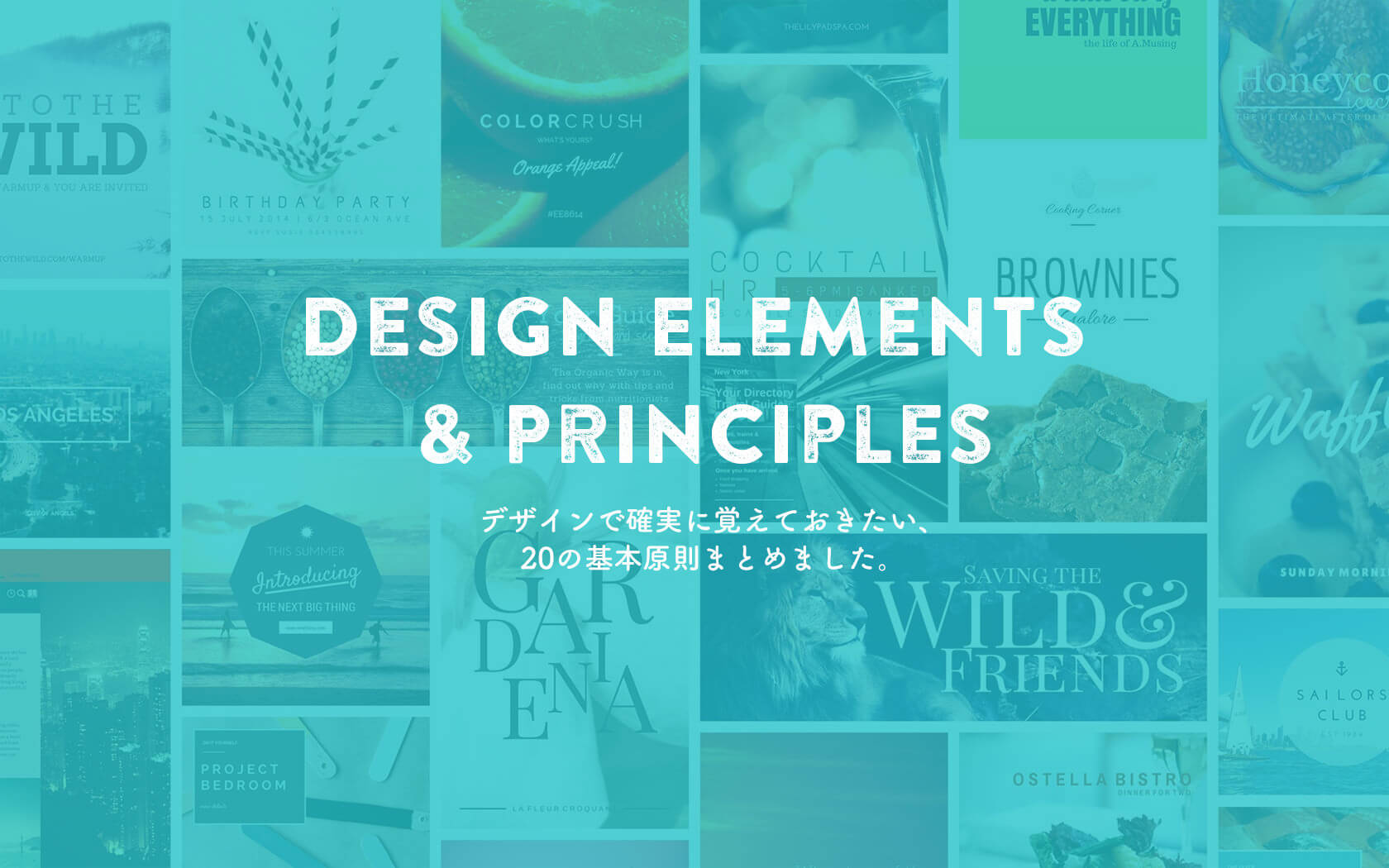 20design-principle-top