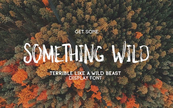 something-wild-typeface