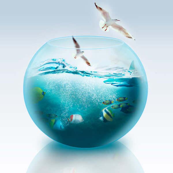 fishbowl10Final1