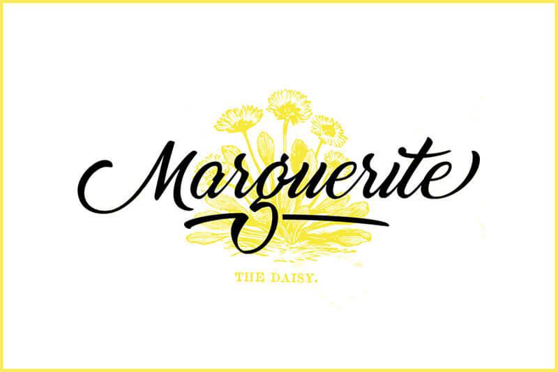 01-marguerite