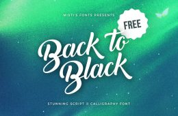 Back-to-Black-free-creative-script-calligraphy-font-1