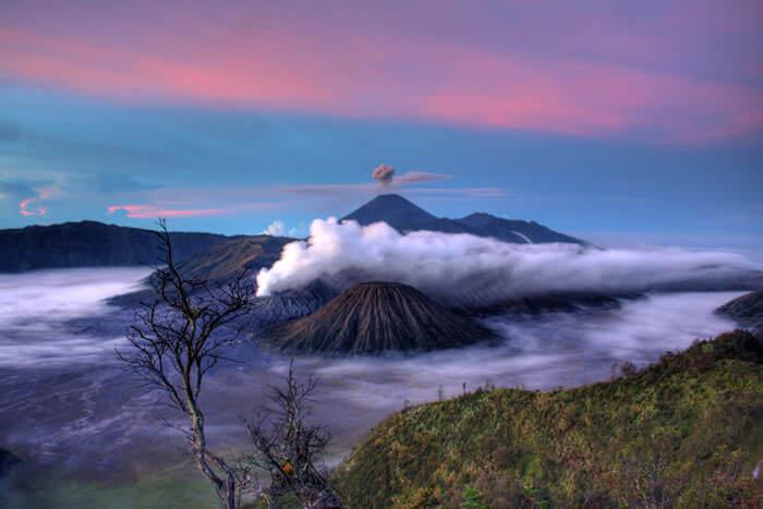 5-landscape