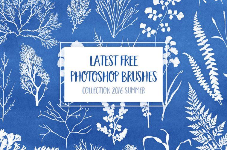 latestbrush2016summer