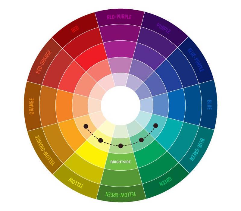 colour3-650-a542d8629a-1476252429