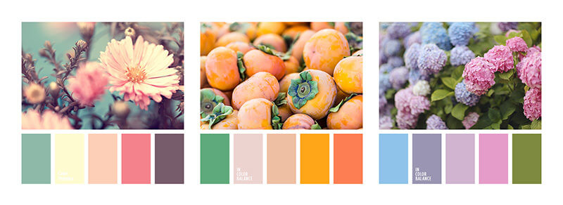 intro-to-natural-palette-4