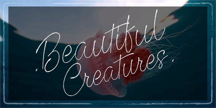 beautiful-creatures-font
