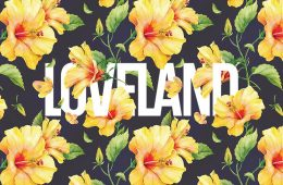 floral-typography-featured-image