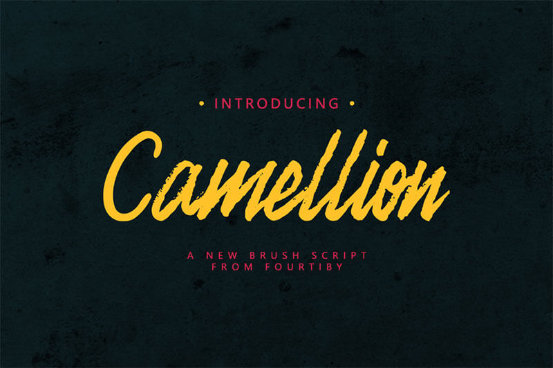 camellion-brush-demo_irfan-ulya_040917_prev01