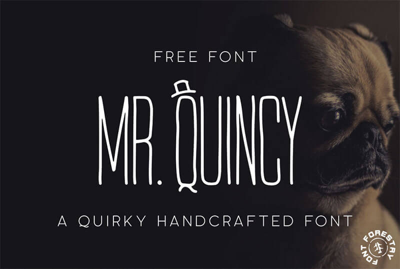 mr-quincy