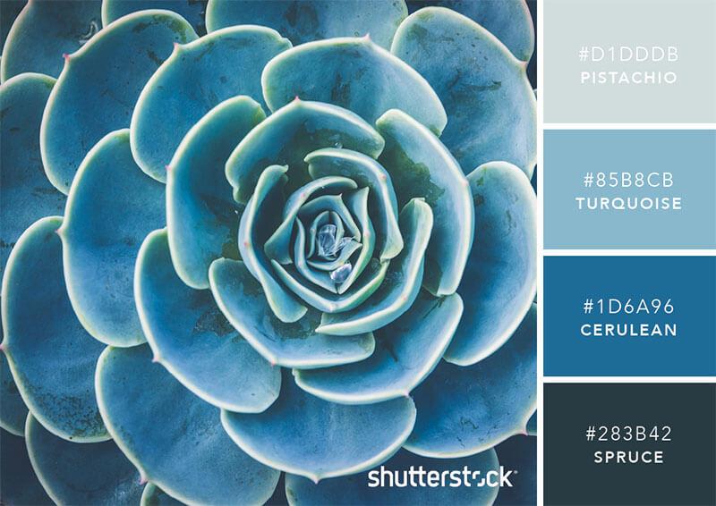 101-color-combinations-sttk-post12