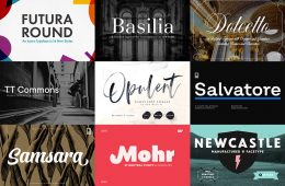 product_grid_-the_professional_dynamic_font_bundle-1-1